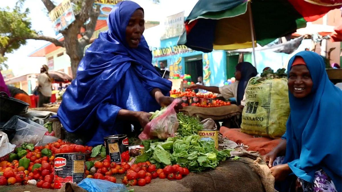 Somálští džihádisté zakázali plastové pytlíky a kácení vzácných stromů