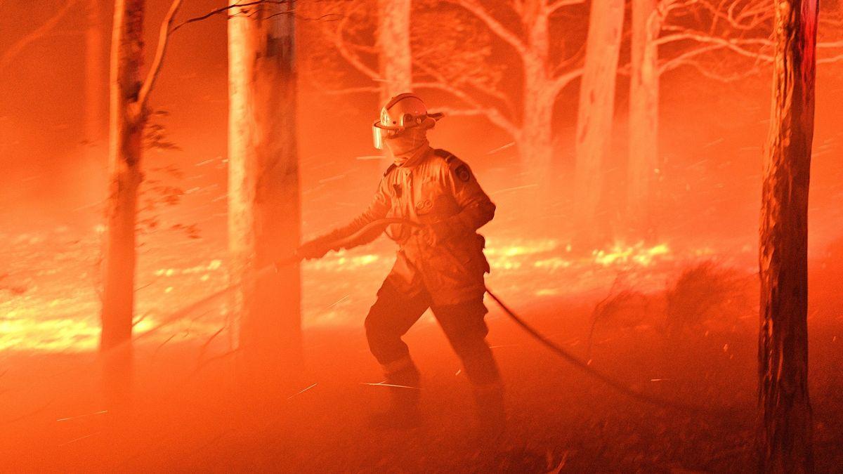 Ničivý oheň vAustrálii: Na 500milionů mrtvých zvířat a 23lidských životů