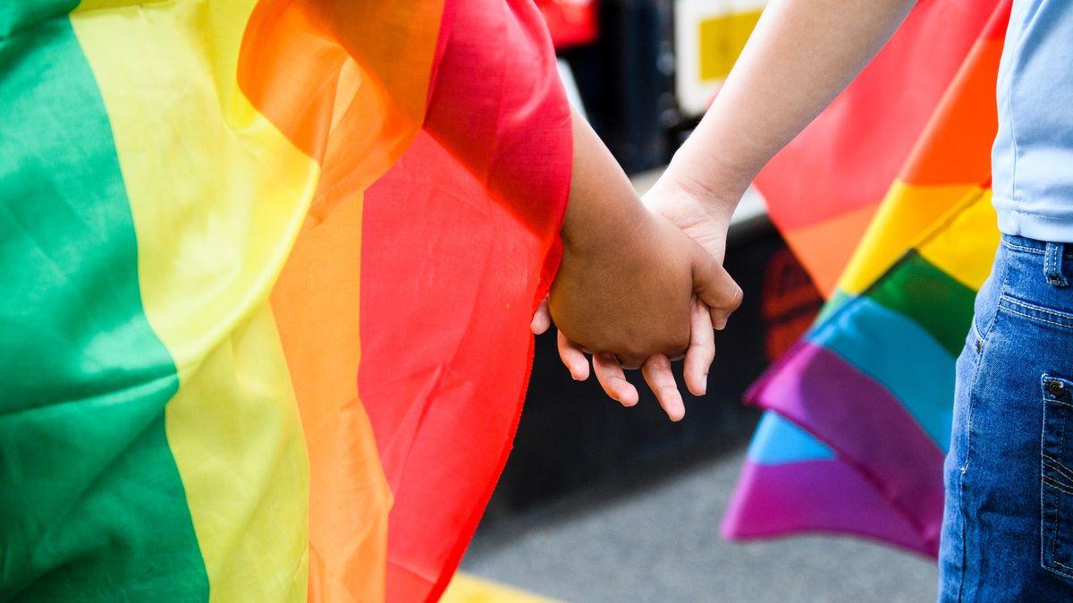 Švýcaři podpořili větší ochranu LGBT komunity