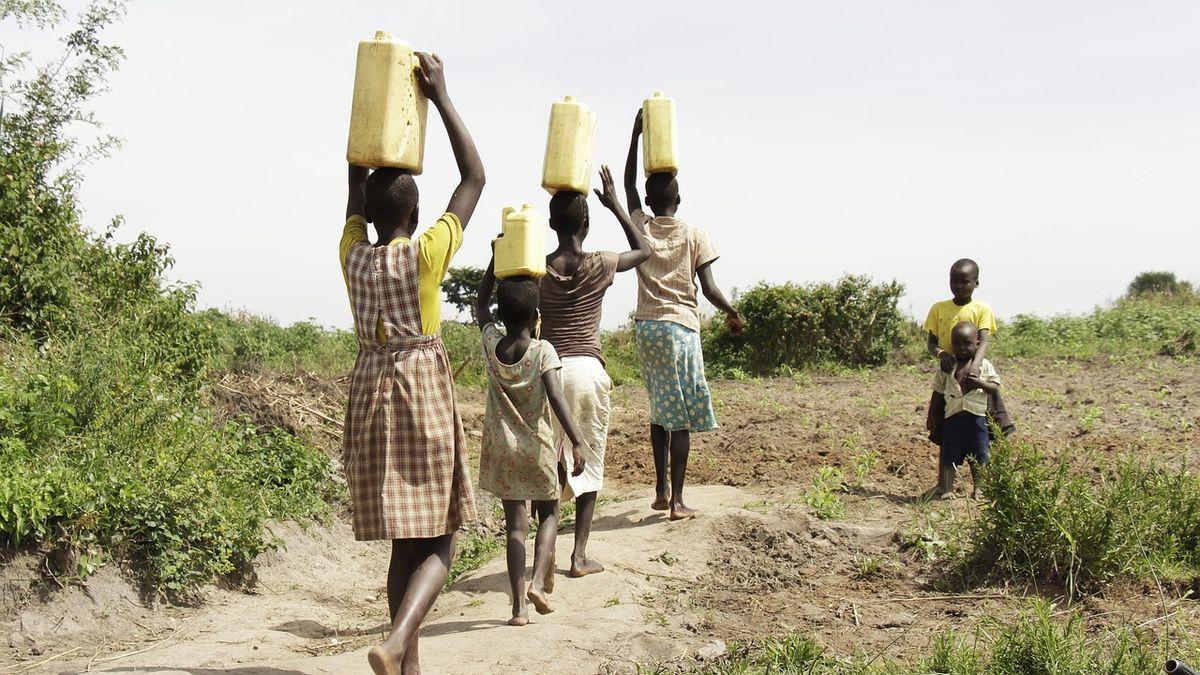 Hrozí migrační vlna ztracené generace zAfriky. Investuje do venkova, apeluje zemědělský fond