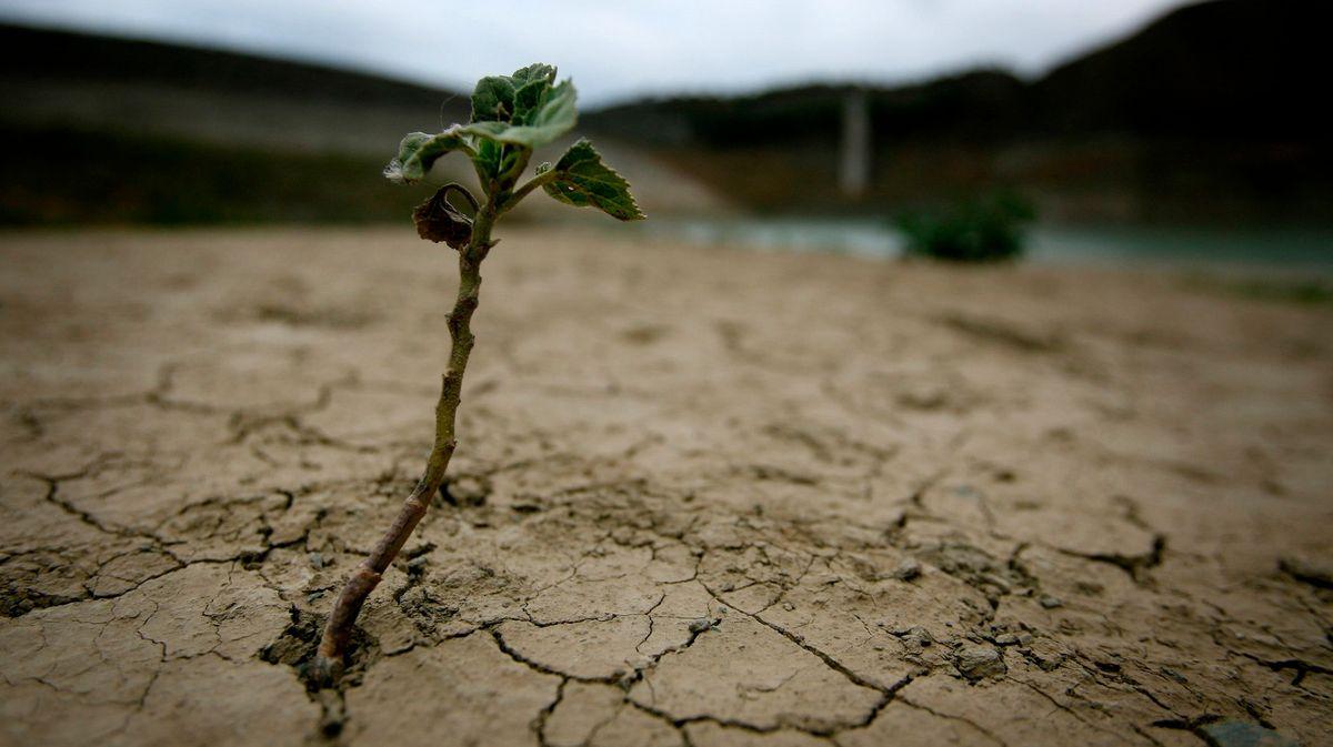 Nová data osuchu: Češi přicházejí onejoblíbenější chvíle, voda se bude dovážet od moře