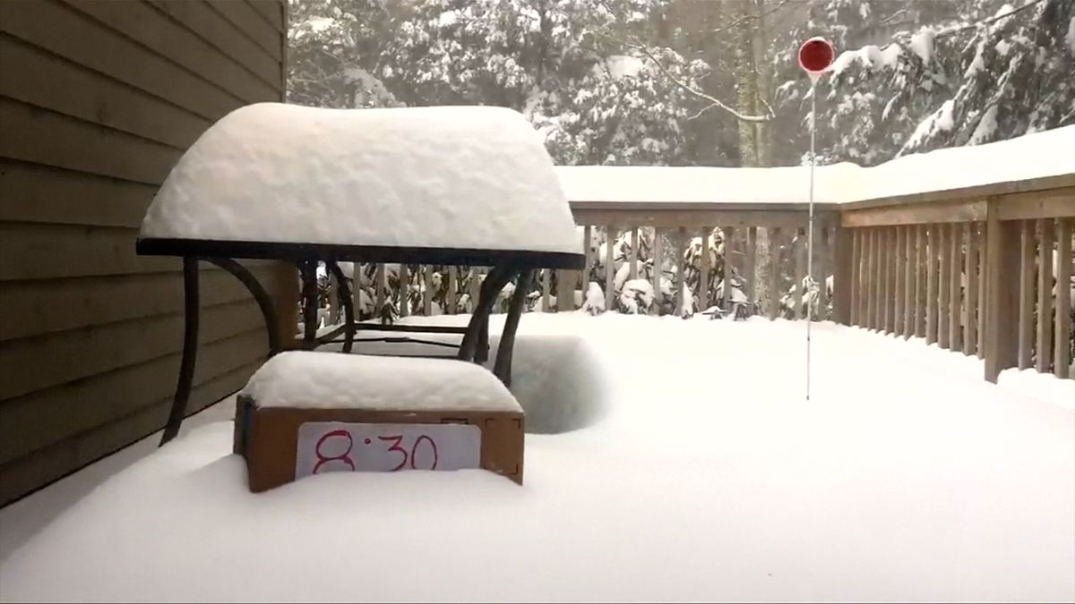 Jihovýchod USA zasáhla silná sněhová bouře. Lidé jsou bez proudu a nemají vyjíždět na silnice