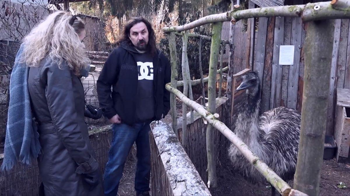 Vybudoval nelegální zoologickou, teď mu utíkají šelmy a vesnicí se šíří strach