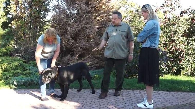 Developer Korec nám ukázal psí chatku za statisíce. Má vlastní topení