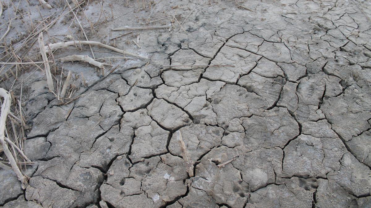 Prvně vhistorii čelíme suchu, při němž se musíme bát povodní