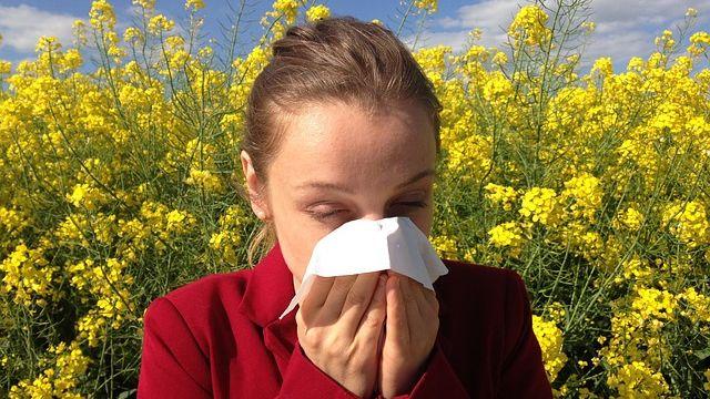 Alergie je téměř civilizační chorobou, může za ni i hojnost, ve které žijeme