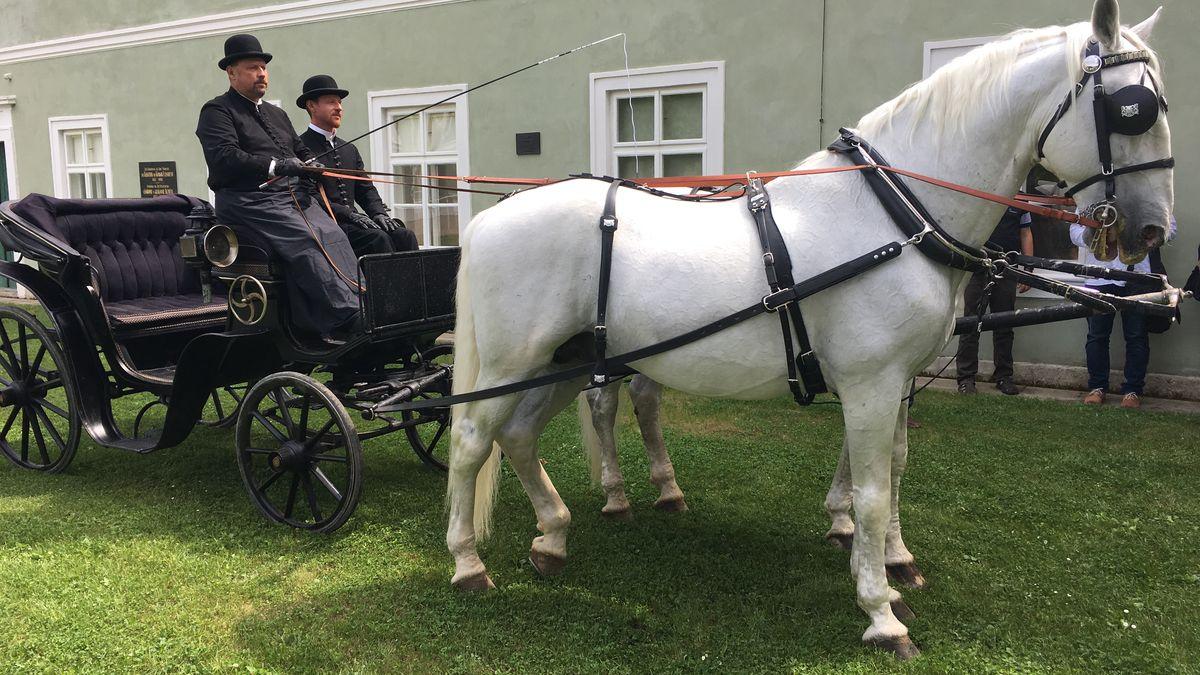 Záznam: Jedinečná vzpomínka na první republiku, v Kladrubech ukázali zachráněný Masarykův kočár