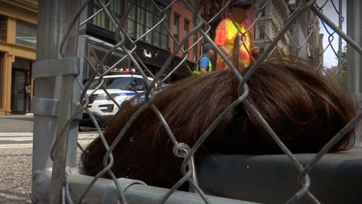 Nelegální instalace vNew Yorku poukazuje na zacházení sdětmi na hranicích, reakce se mísí