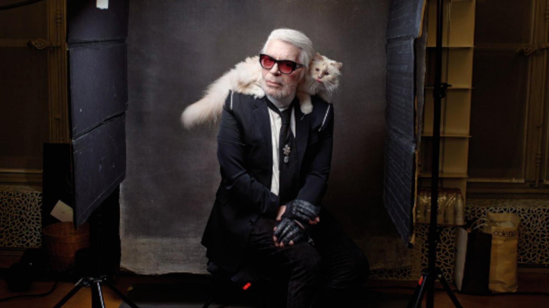 Po Lagerfeldovi může dědit ijeho kočka. Slavný návrhář ji krmil kaviárem servírovaným na stříbrném nádobí