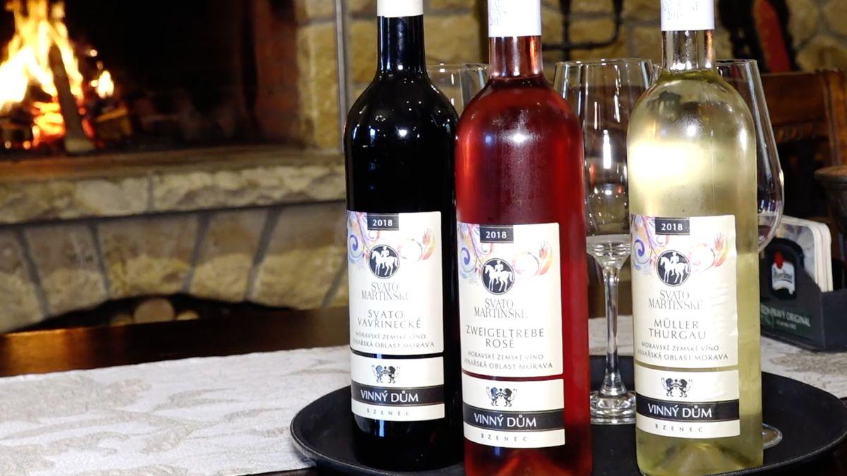Největší košt svatomartinského nebude. Těchto vín bude letos méně