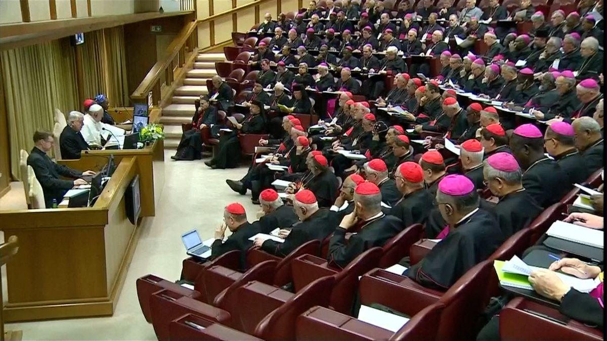Církev ničí důkazy ozneužívání nezletilých, prohlásil německý kardinál