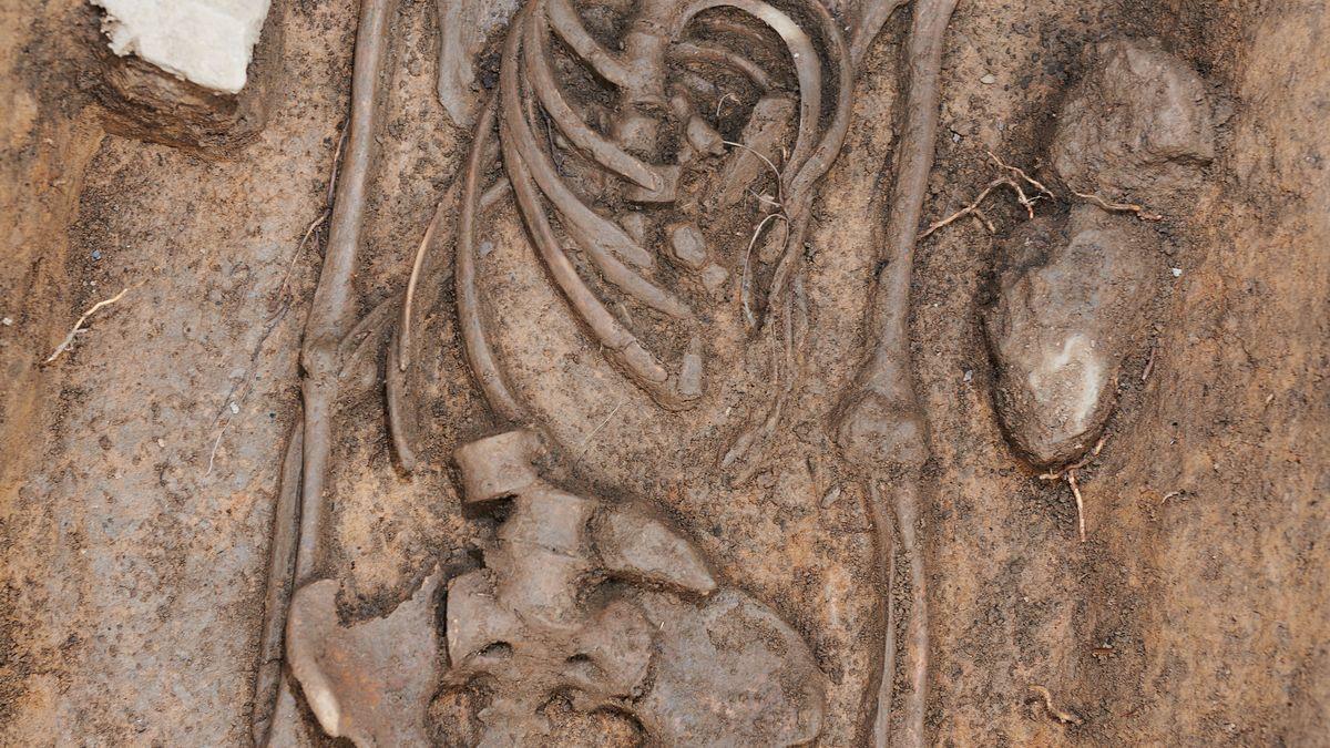 Archeologický výzkum zaniklé vsi Nesvětice na Mostecku skončí vkvětnu