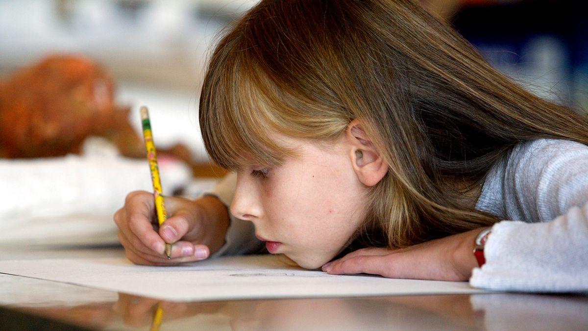 Školy by se měly otevřít, děti nejsou náchylné knákaze, míní experti