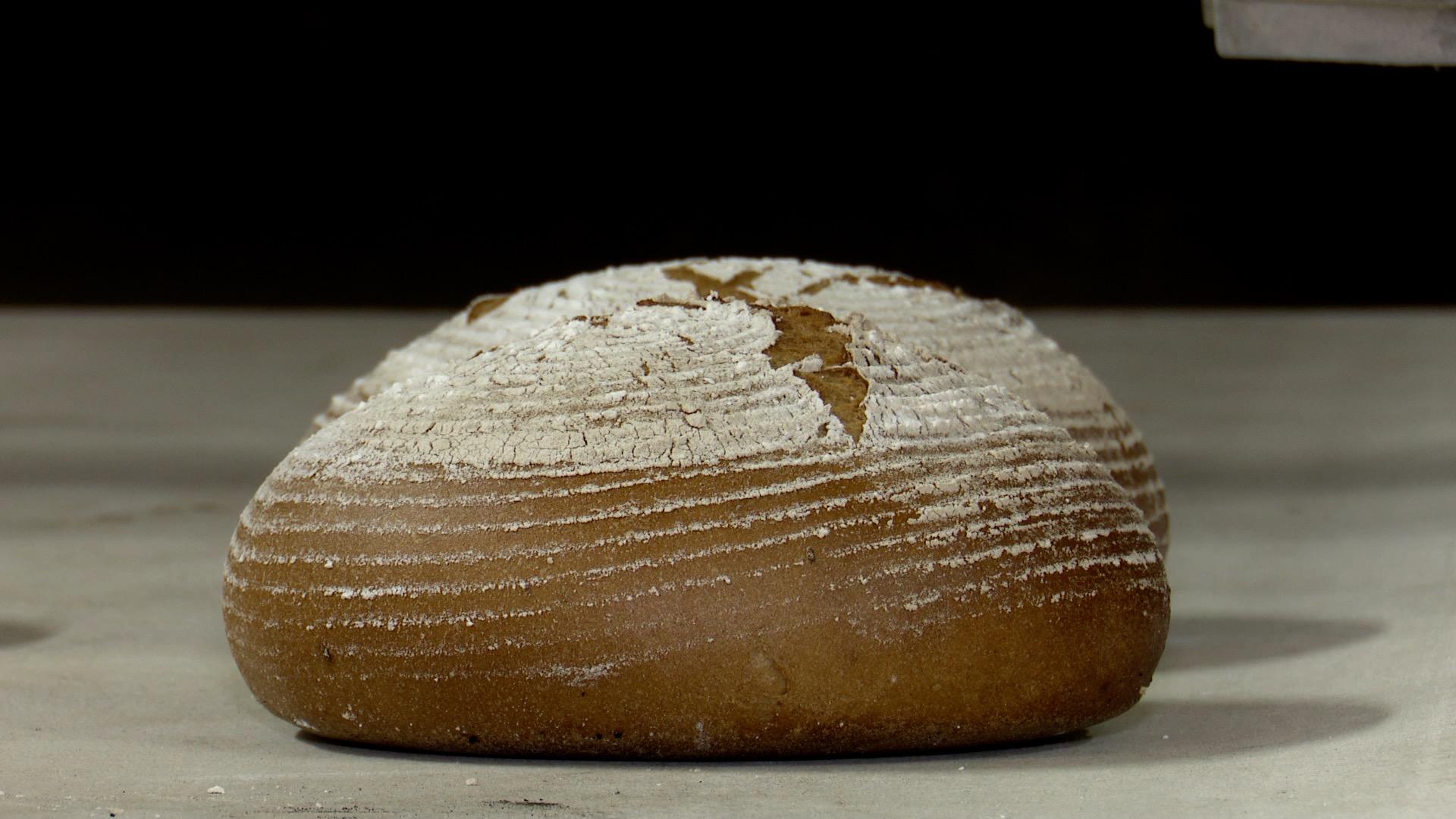Čeští olympionici snídají v Jižní Koreji chléb Karel. Přímo na místě jim ho připravuje sušický pekař