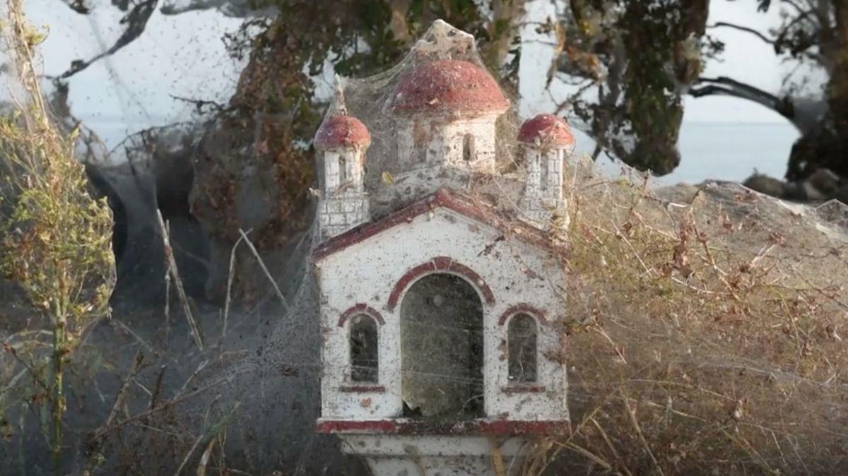 Okolí řeckého jezera pokryla obří pavučina a tisíce pavouků. Nebylo to poprvé