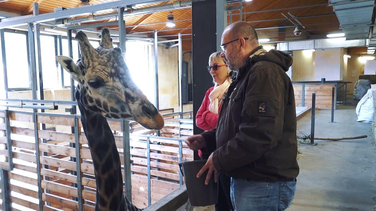 Moje místa: Chvíle euforie izmaru. Ředitel pražské zoo Miroslav Bobek propadl vášni pro zvířata už jako kluk