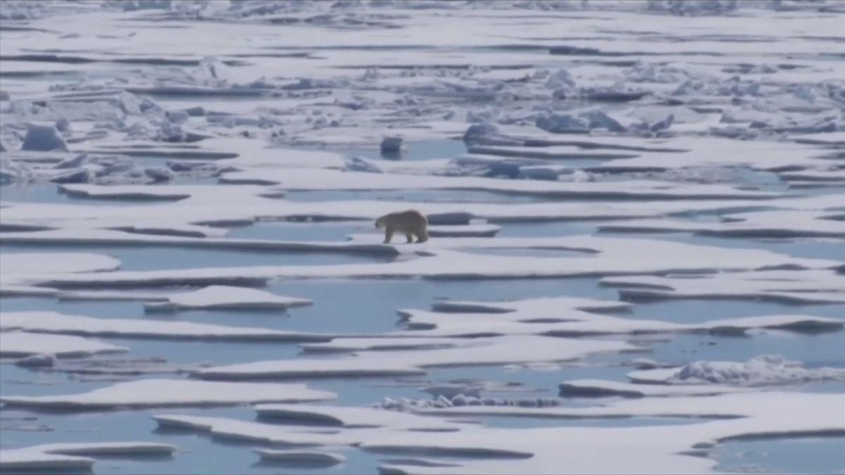 Vědci se ovýchod Antarktidy nebáli. Teď zjistili, že taje rekordním tempem