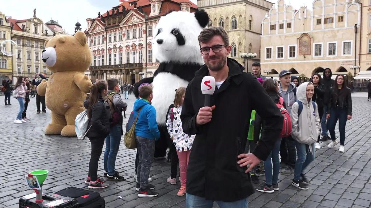 Praha vyhlašuje válku maskotům vcentru. Je to organizovaný byznys, ne umění, říká Janek Rubeš