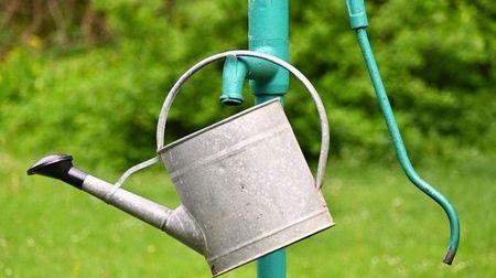Že vám vodovod a studnu nemohou vzít? Sucho už pomalu mění iÚstavu. Experti se některých návrhůděsí