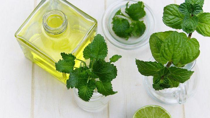 Vhorku ochladí bylinky. Radíme, jak na osvěžující nápoj nebo chladicí sprej