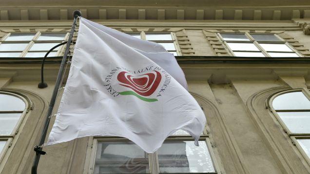 Nejvyšší soud přiznal Halbichovi milionovou odměnu ve sporu oLidový dům