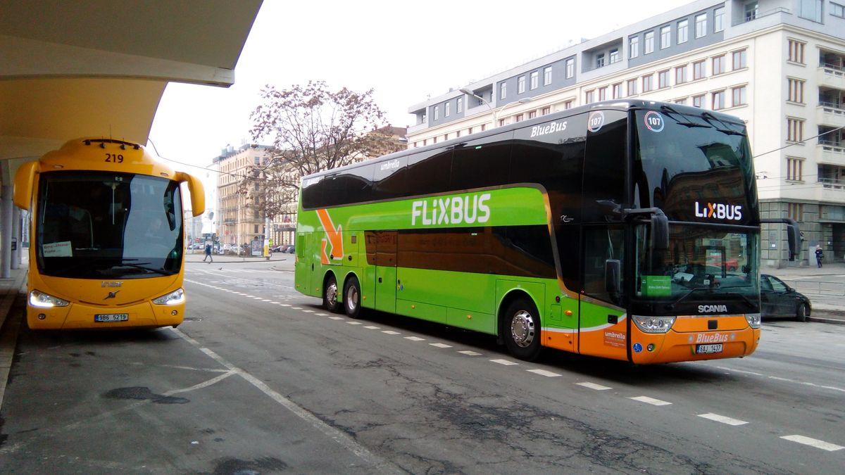 RegioJet a FlixBus vpříštím týdnu obnoví další spoje, roste poptávka
