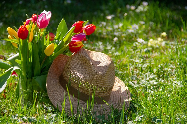 Rostliny jsou živé bytosti, nedostatek vláhy u nich neokecáte, říká floristka