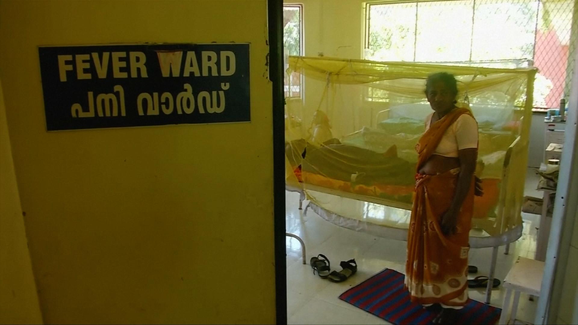 agentura pro dohazování v Indii