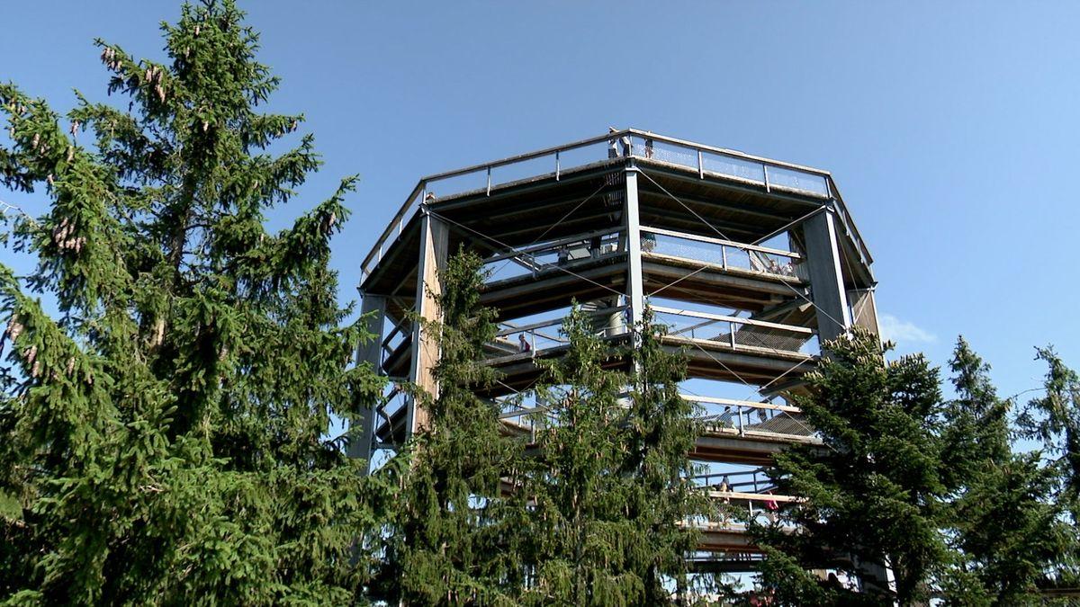 Stezka korunami stromů na Lipně slaví. Během šestileté existence se návštěvnost přiblížila dvěma milionům