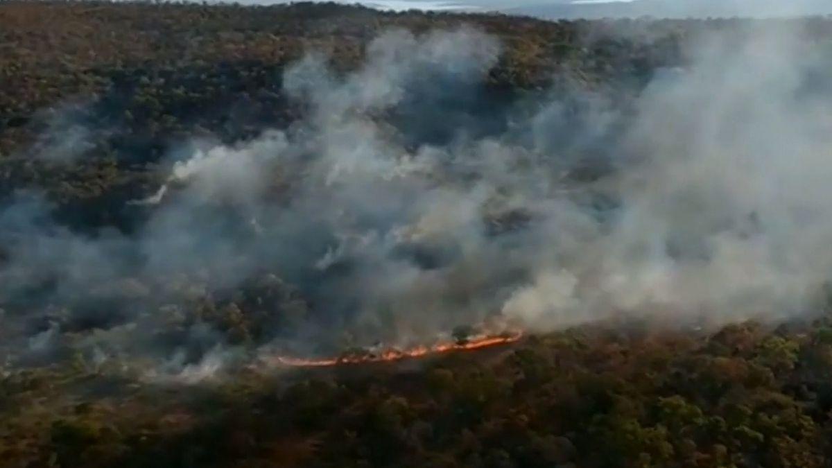 Amazonský prales vplamenech, největší deštný les postihl rekordní počet požárů
