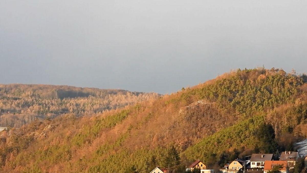 Do Česka přijdou holomrazy, přes víkend se ochladí až na–6 stupňů