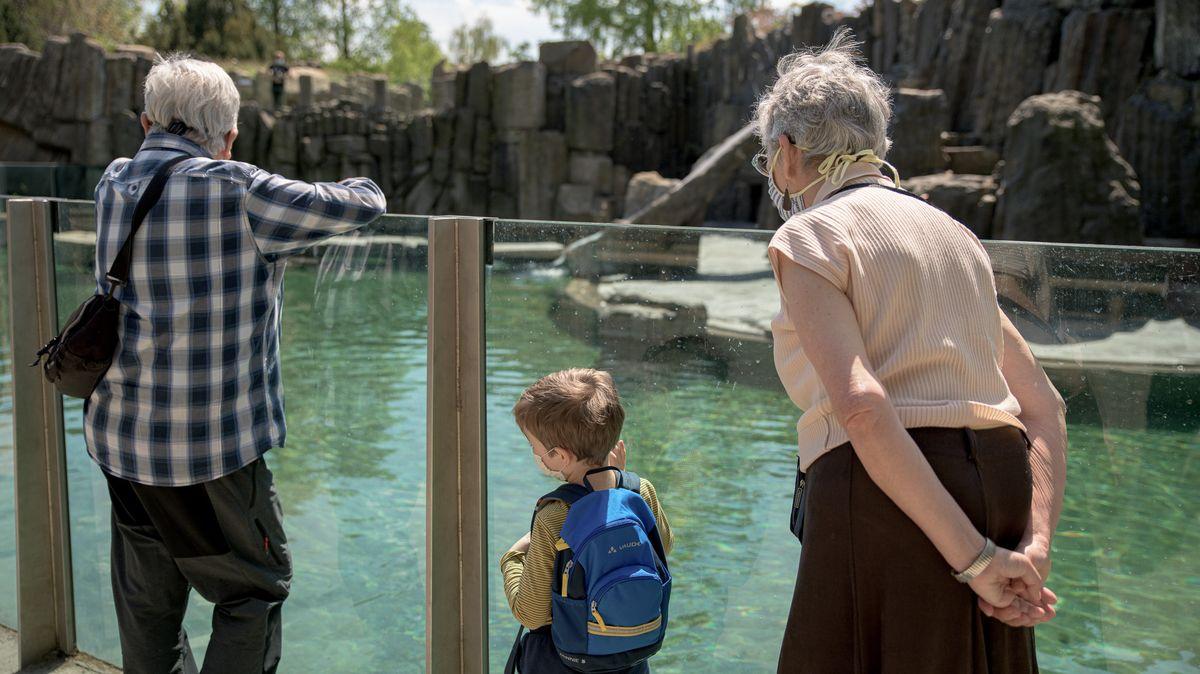 Zoologické zahrady jsou připraveny vpondělí otevřít, vstupné měnit nebudou