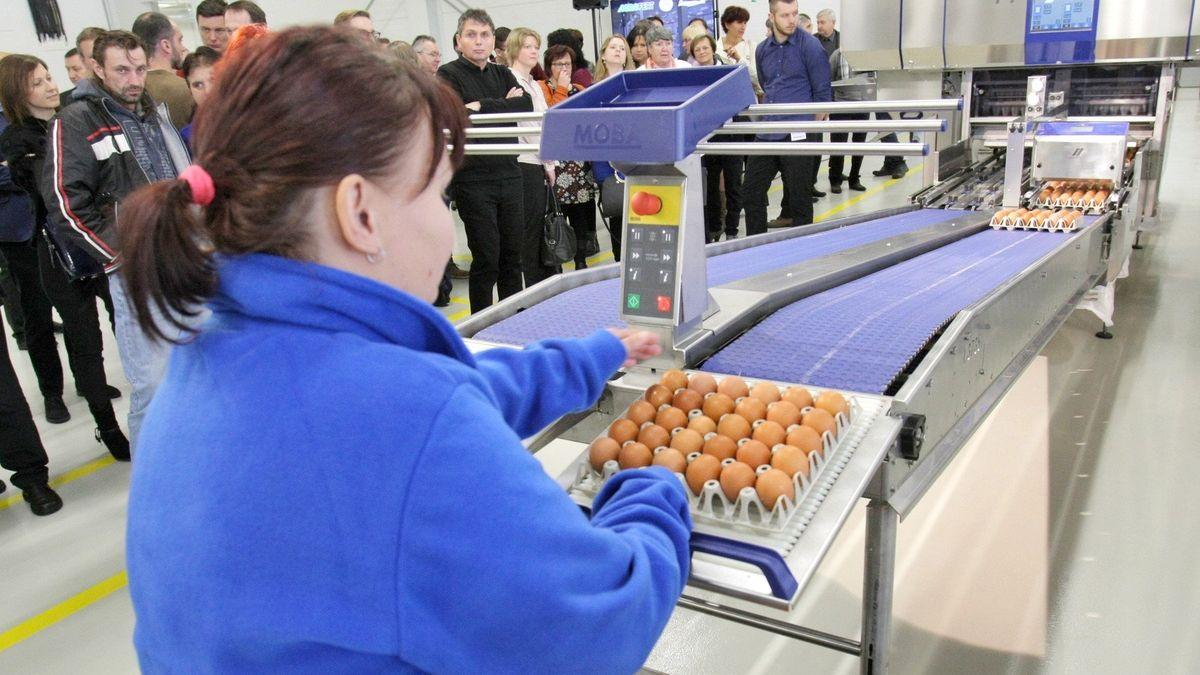 Ceny potravin rostou. Nákup 60nejběžnějších položek je ostovku dražší než loni a za rok bude hůř