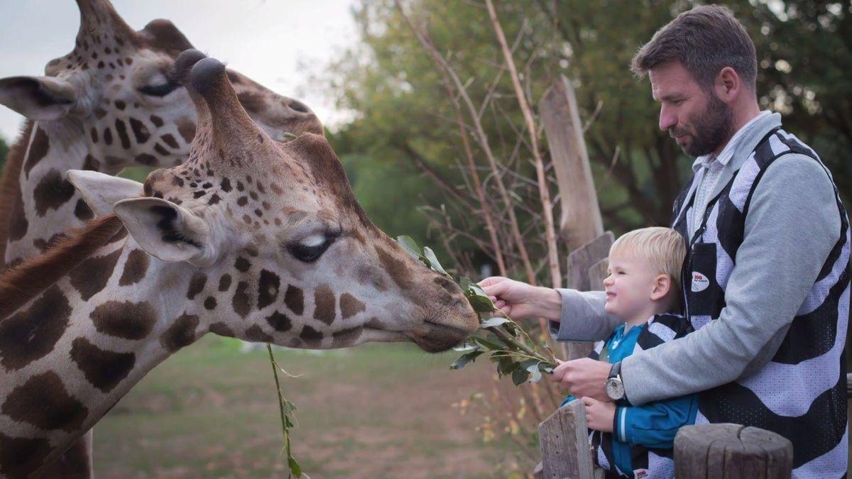 Mamablog: Jak nakrmit žirafu a proč želva nesundá krunýř. Tipy na to, jak si děti užijí návštěvu zoo