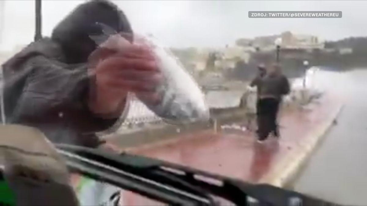 """Na Maltě """"pršely"""" ryby, lidé je sbírali přímo na ulici"""