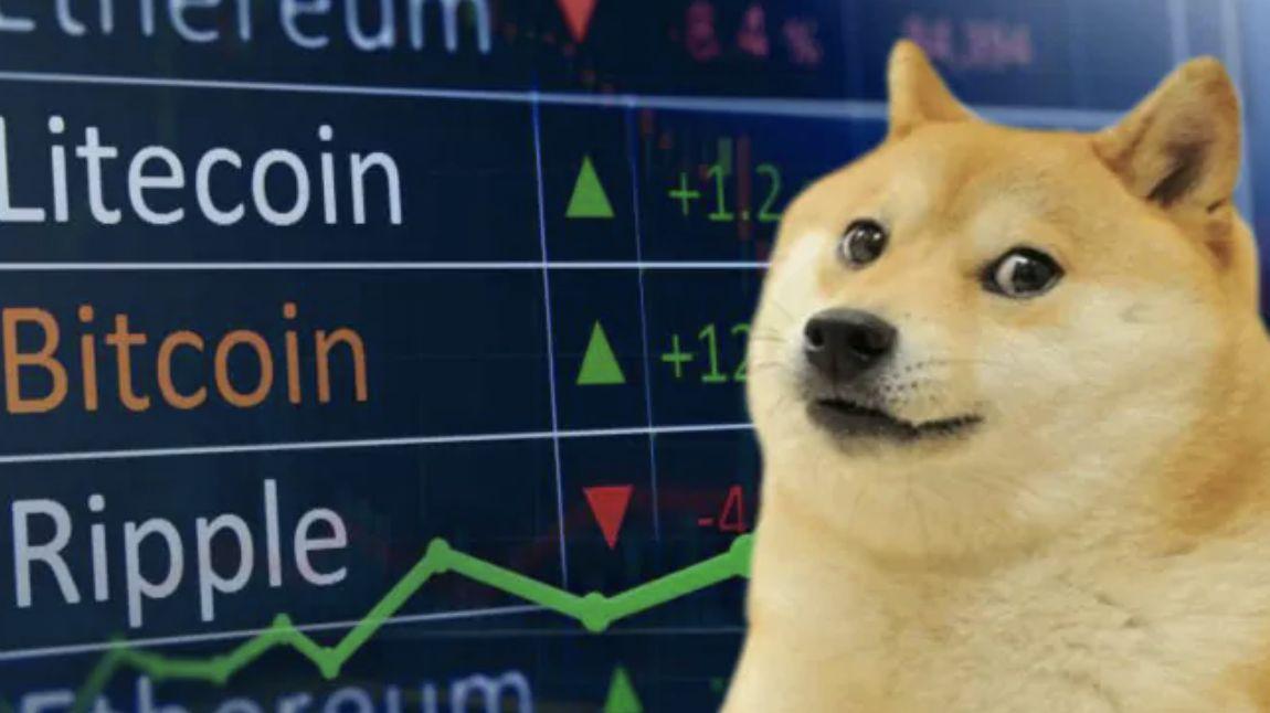 Pes Shiba-Inu opravdu zamíří na Měsíc. SpaceX začne přijímat měnu dogecoin