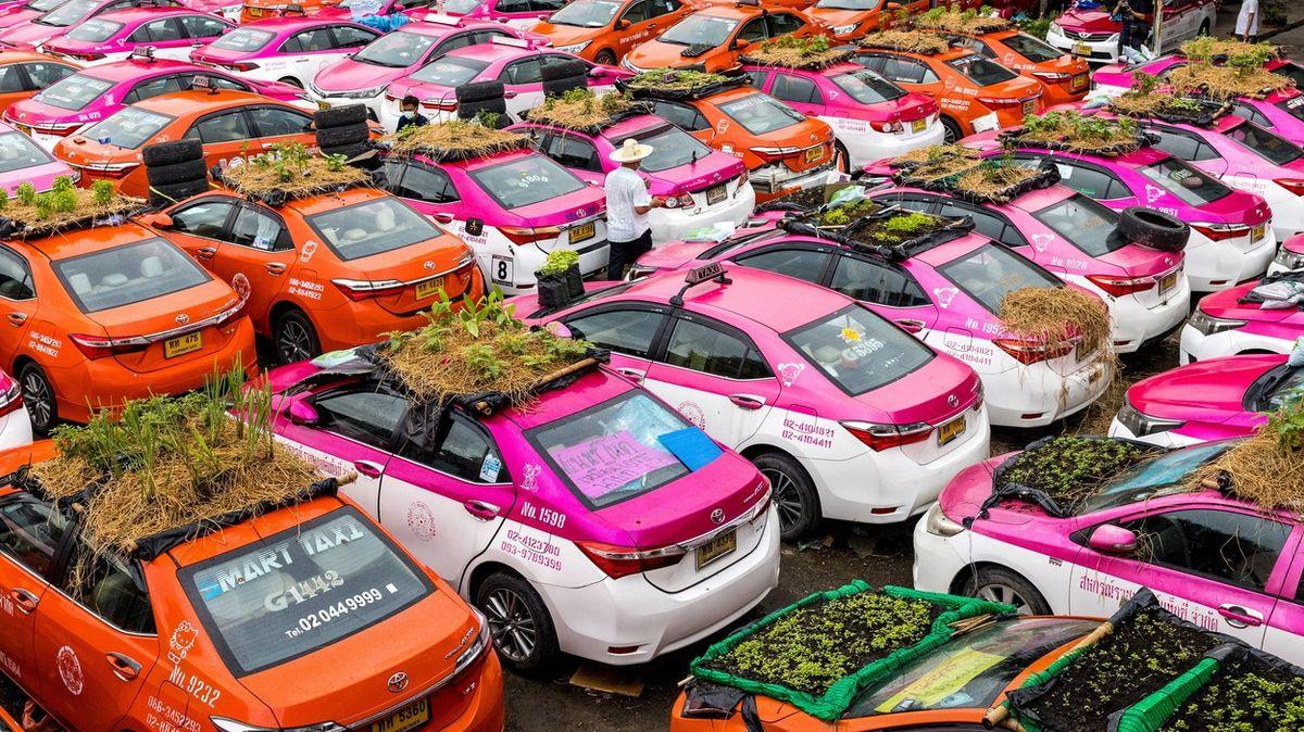 Fotky: Turisté se nevrátili, taxíky vBangkoku teď slouží zelenině a žábám