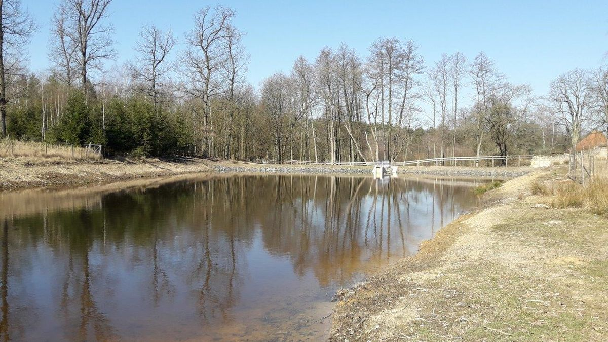 Ve Žďárských vrších přibyly díky dotacím obnovené rybníky itůně