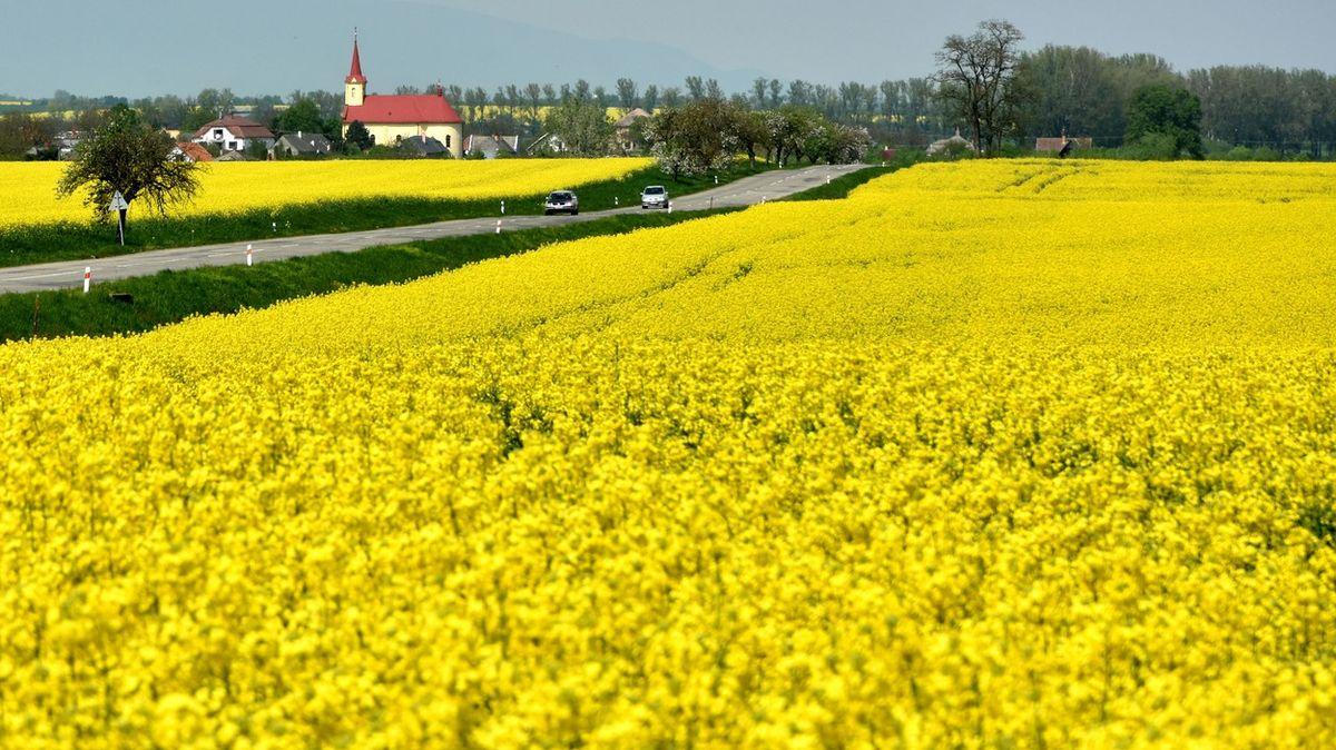Reformu zemědělské politiky udělali velcí příjemci dotací, říká europoslanec