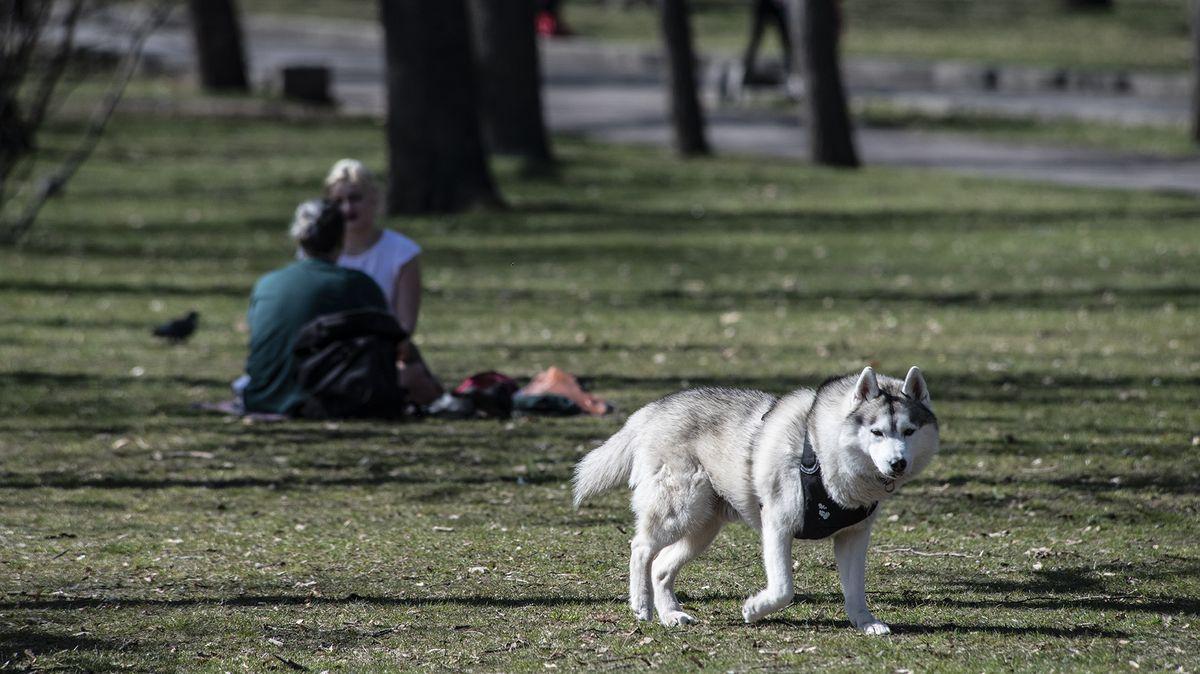 Votice na Benešovsku chtějí vybudovat park na pozemcích za klášterem
