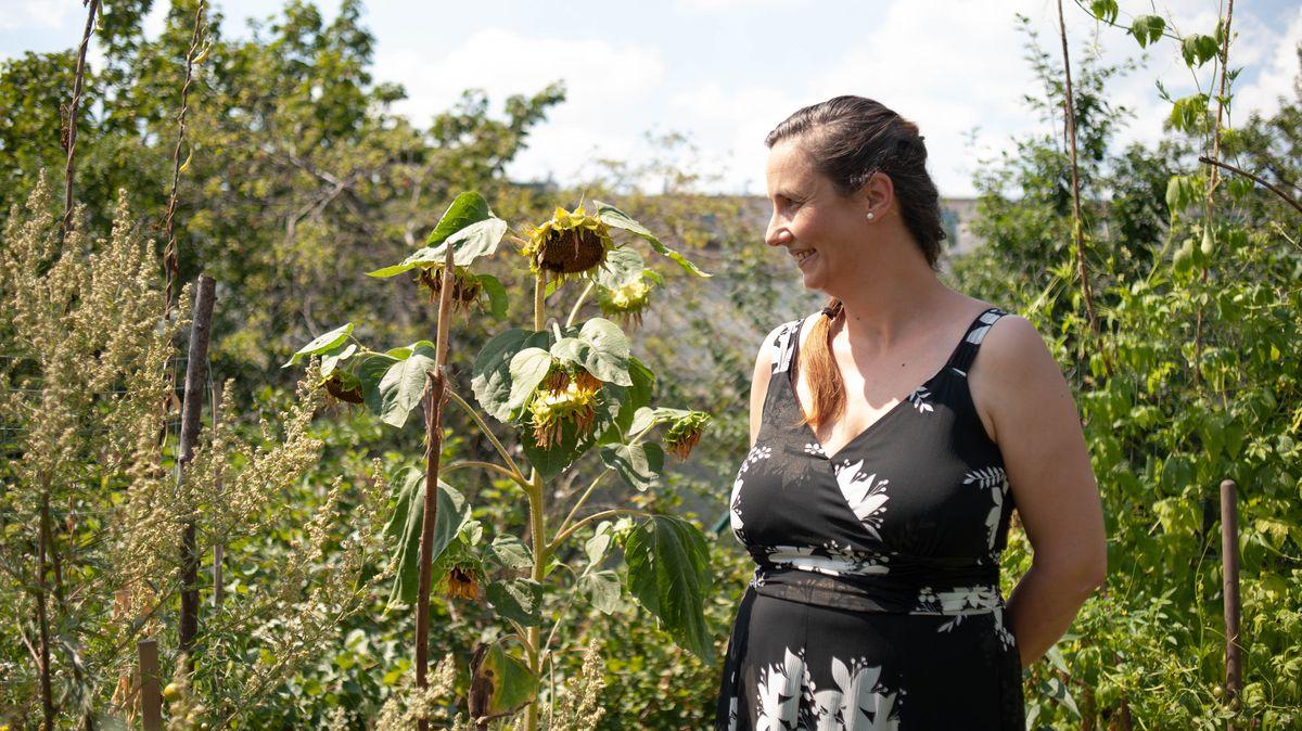 VPardubicích vznikne první komunitní zahrada