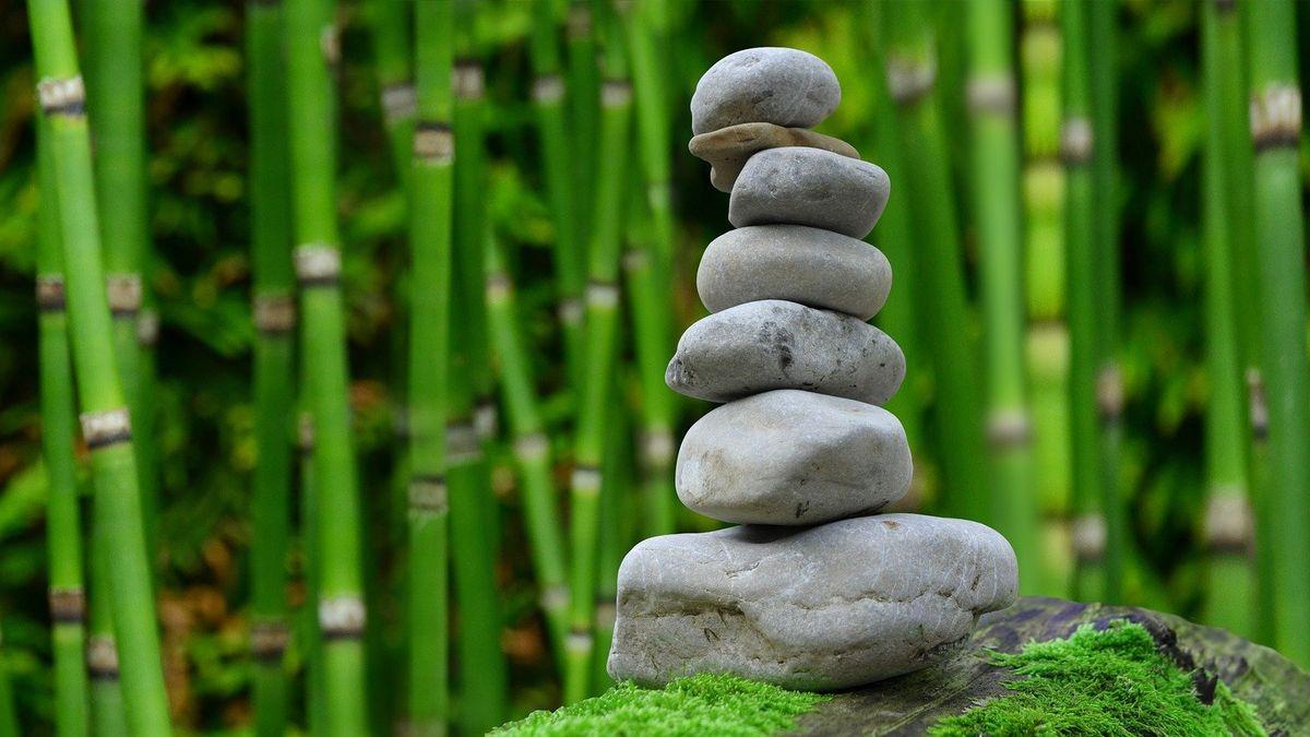 Zen a umění investovat. Japonští mniši kupují zelené dluhopisy