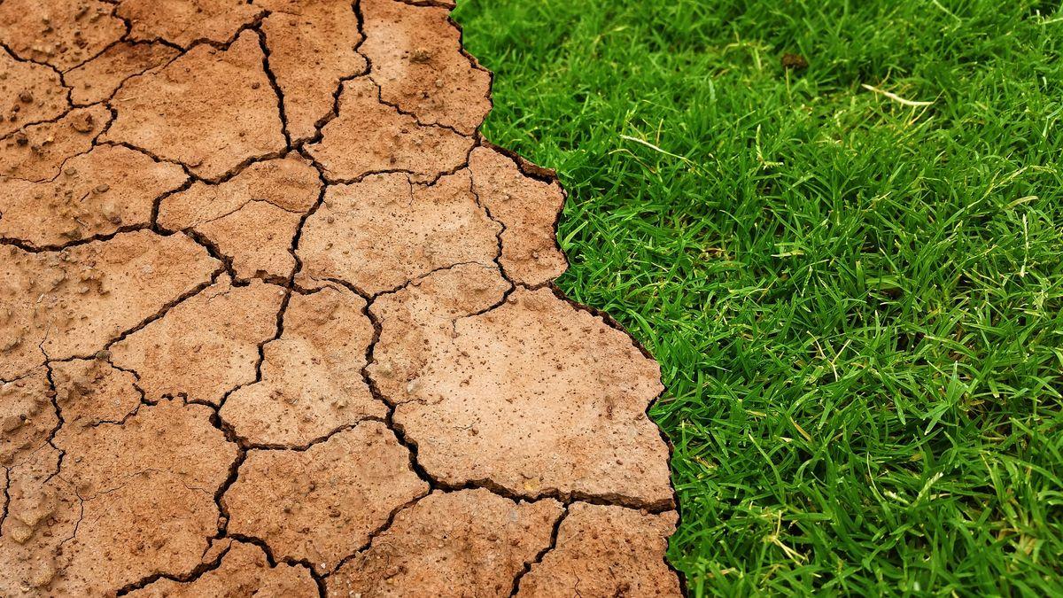 Česko může na oteplování vydělat, spočítali ekonomové