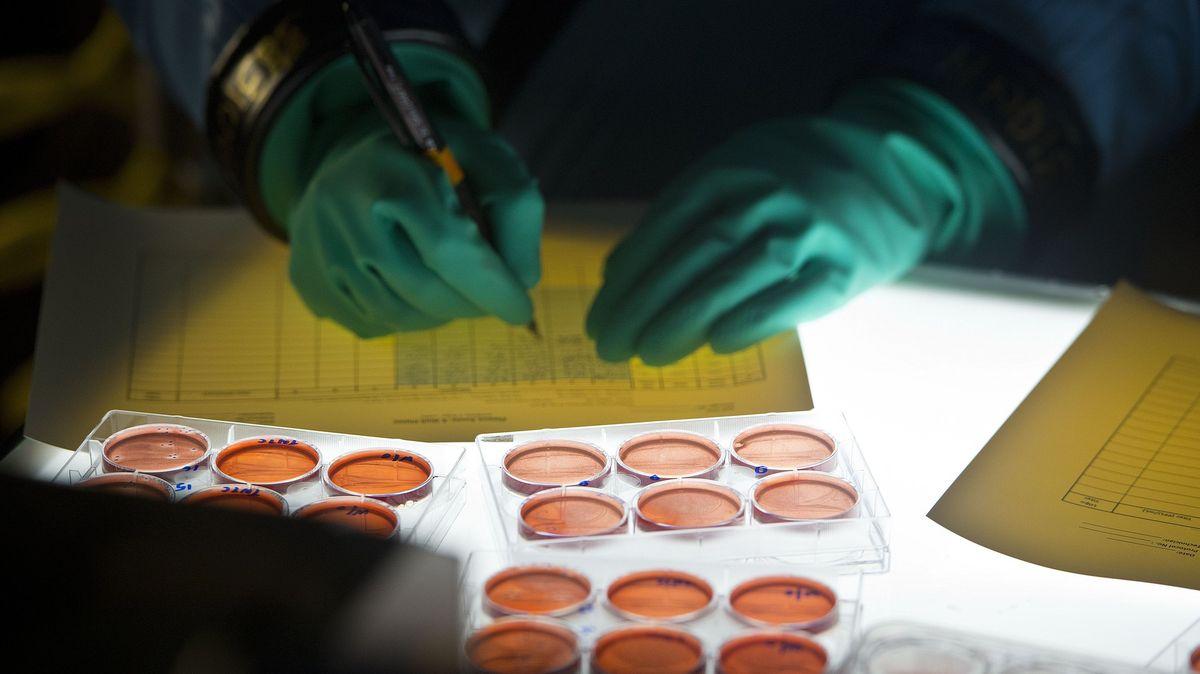 Koronavirus může pocházet zlaboratoře, říká nově Čína. Ale zté americké