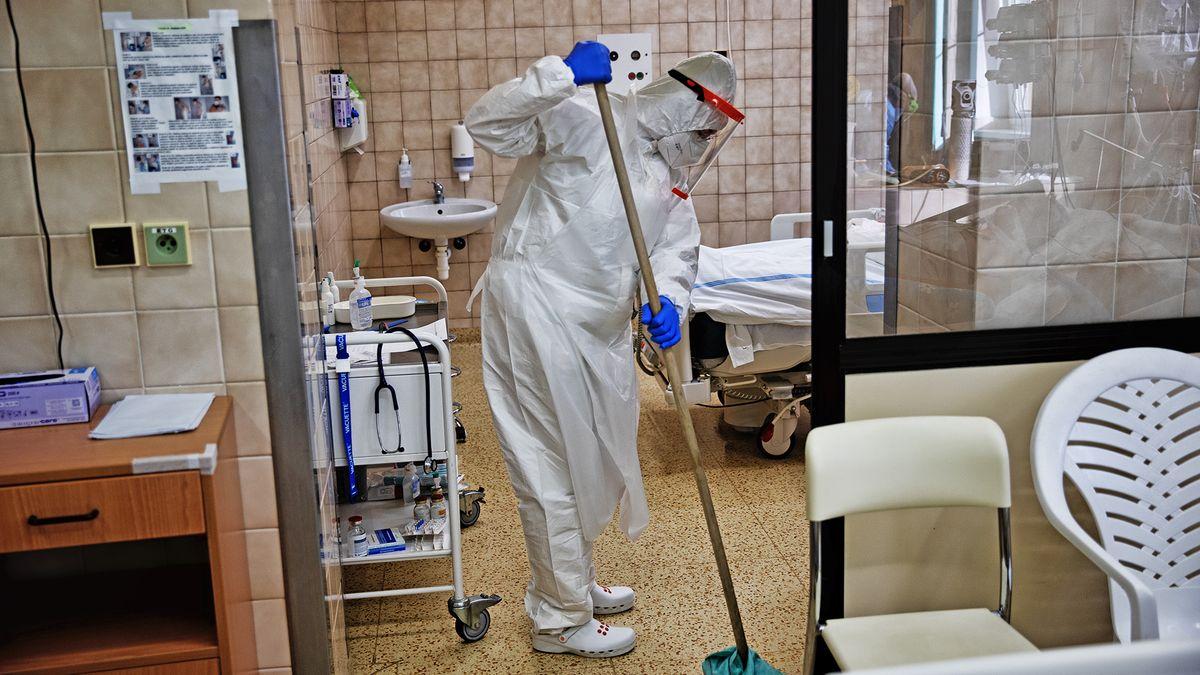 Další pandemie je nevyhnutelná. Potřebujeme lovce virů, varují vědci