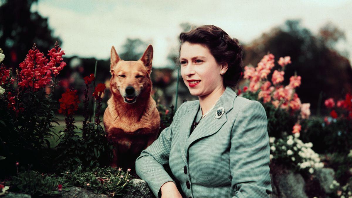 Jak šel čas skrálovnou Alžbětou II. Podívejte se na snímky zjejího mládí