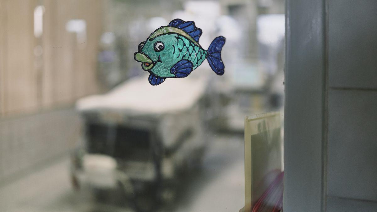 Neurochirurgická klinika svatoanenské nemocnice se vrací kběžným operacím