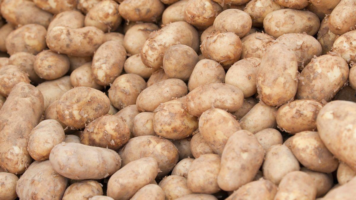 Za 30let vČesku nevypěstujeme ani brambory, říká expert