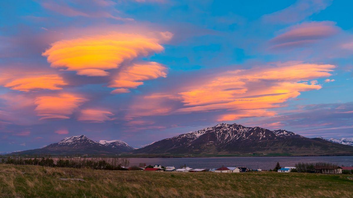 Magická chuť Islandu se skrývá vbřezové pálence