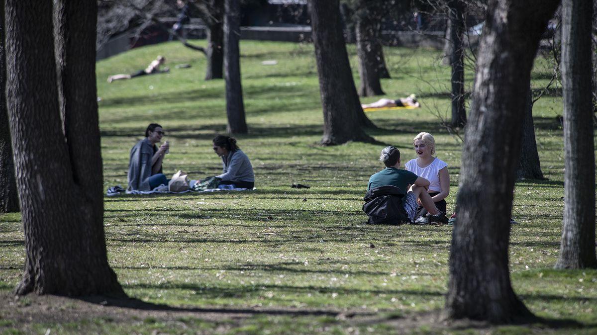 Češi přišli na chuť piknikům. Trendem jsou proutěné retro košíky